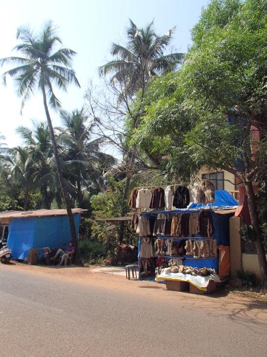 Grandes vacances en Inde épisode 1 : avec Marine pc030001o